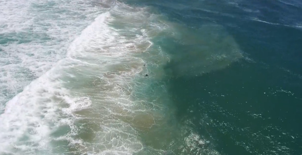 Watch: Little Ripper Drone Saves Swimmers Down Under